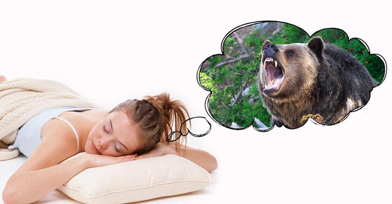 К чему снится, что нападает медведь