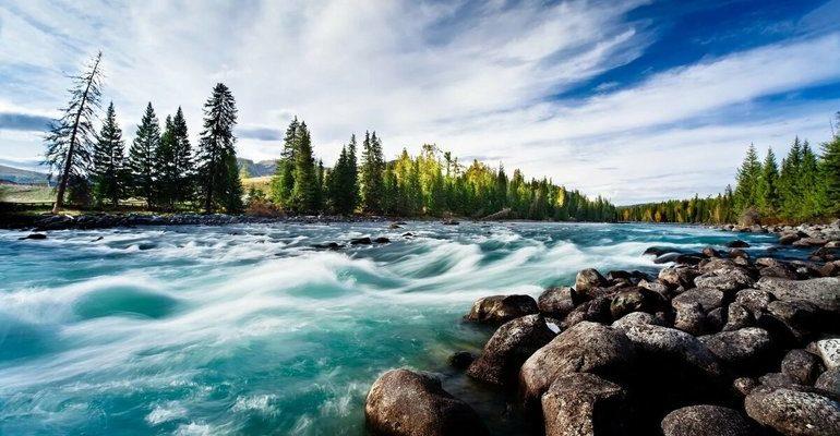 К чему снится река