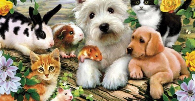К чему снятся домашние животные