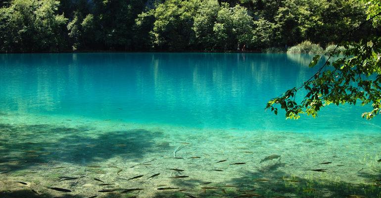 Голубая вода во сне