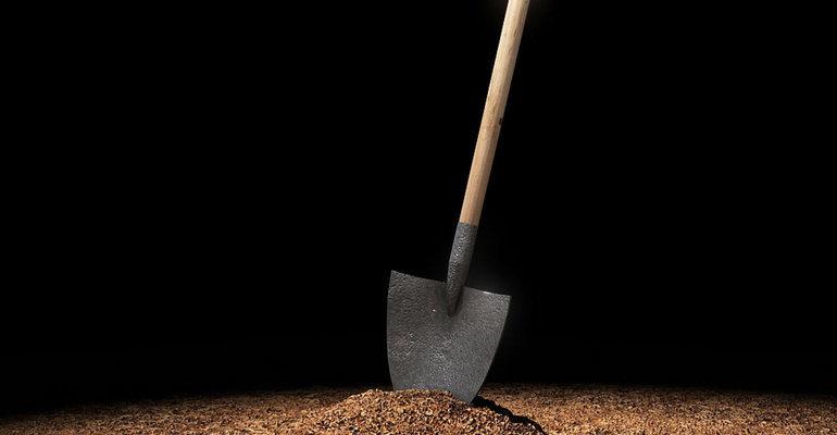 Лопата сонник