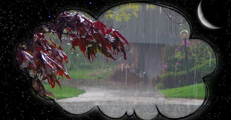 Сон дождь