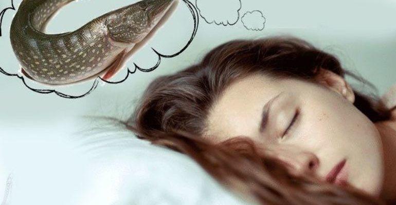 К чему рыба укусила во сне