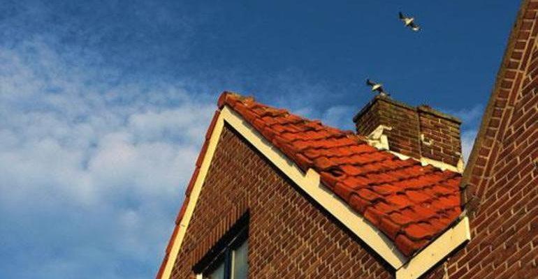 К чему снится крыша дома сонник