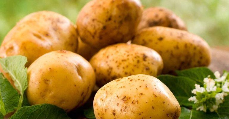 К чему снится сырая картошка сонник