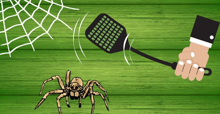 К чему снится убить паука