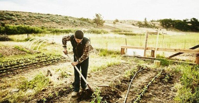 Сонник копать землю лопатой к чему снится