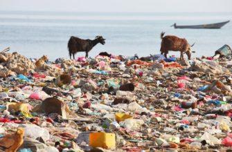 Сонник грязное море к чему снится