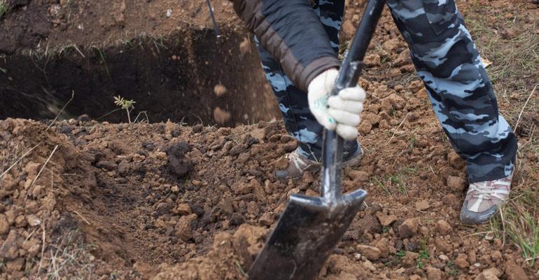 Сонник копать могилу
