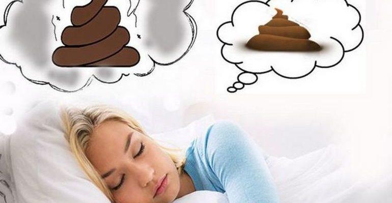 К чему снится говно