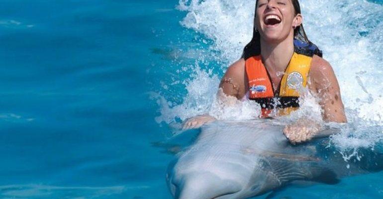 К чему снится плавать с дельфинами сонник