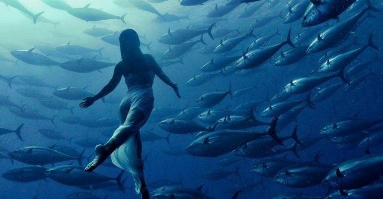 К чему снится плавать с рыбами