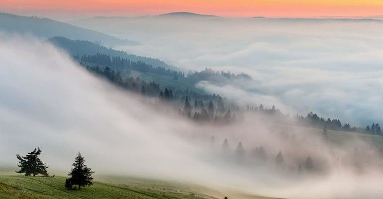 К чему снится туман