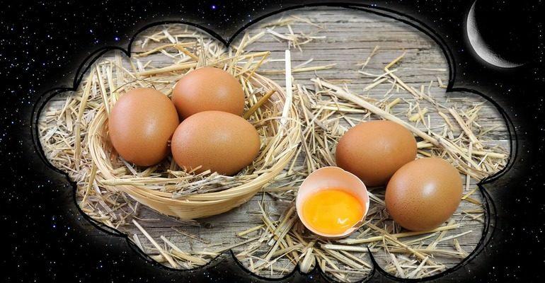 К чему снятся сырые куриные яйца
