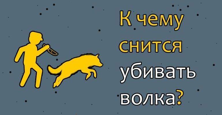 Убить волка во сне сонник