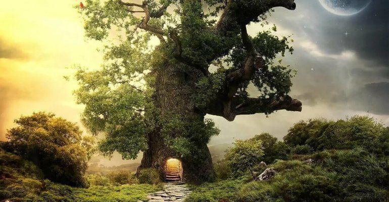 Видеть во сне дерево